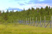 1470 - Old Snow Fence
