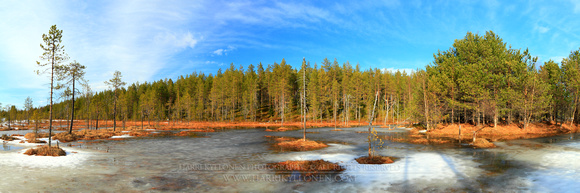 0563 - A - Swamp at spring II - HD